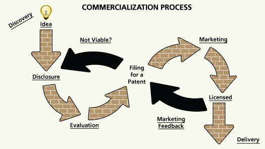 commercialization_process