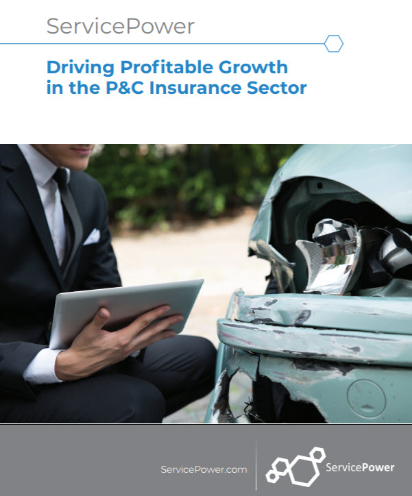Driving profitable growth in the P&C Insurance Sector