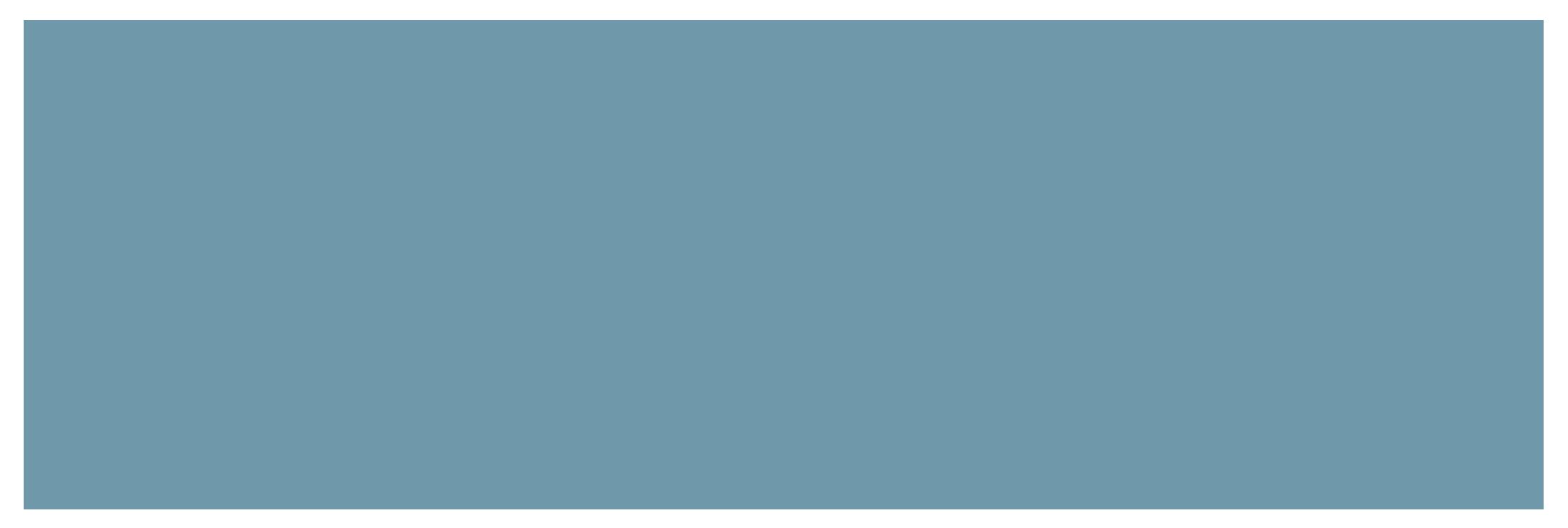NIE_Networks_Logo-1