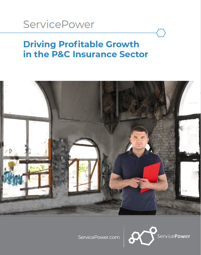 Download: Driving Profitable Growth in the Insurance Sector